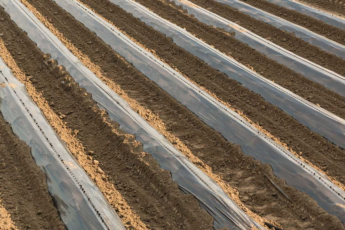 Agriculture films Plastipoliver materie plastiche Italy